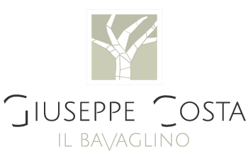 bavaglino-logo